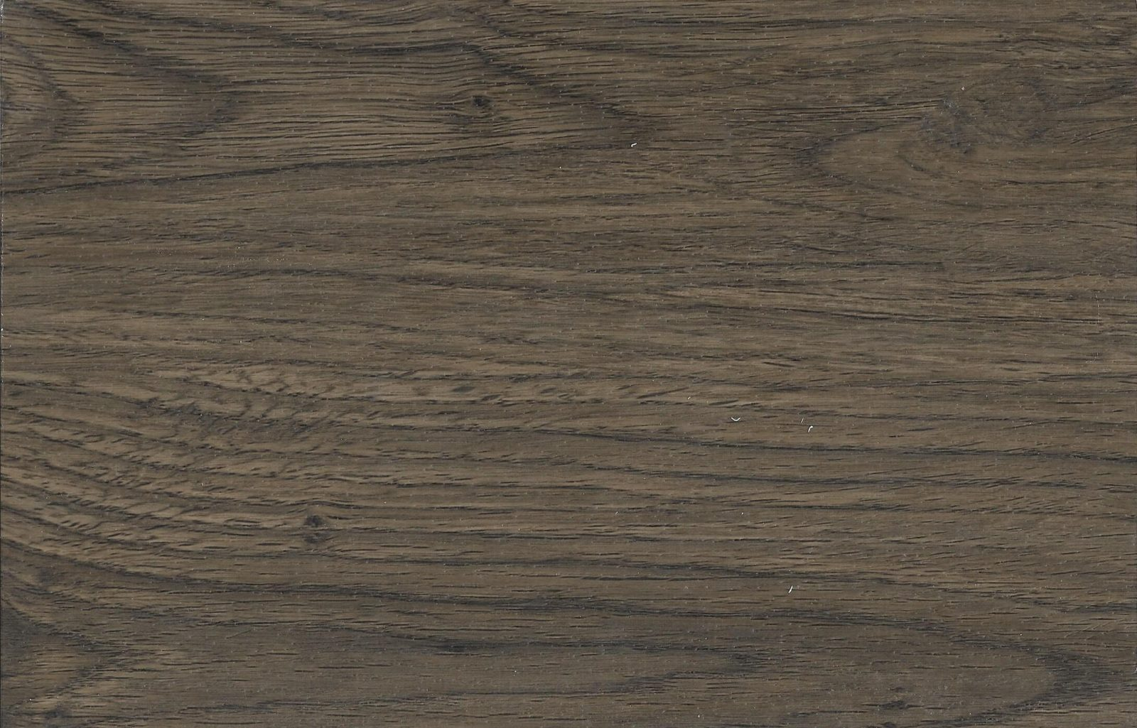 S504 Saddle Oak
